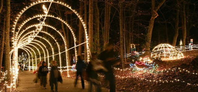 13 Best Christmas Light Displays In South Carolina 2016