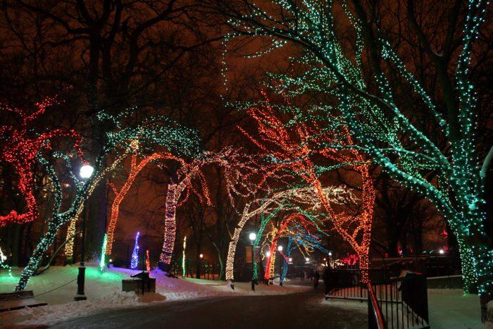 Walk Through Christmas Lights