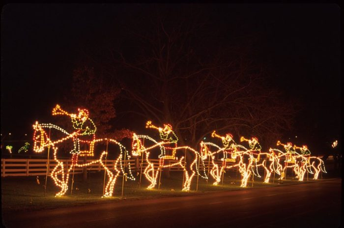 Horse Christmas Lights
