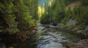 The Underrated River That Just Might Be The Most Beautiful Place In Idaho
