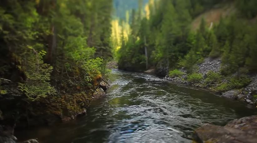 The Underrated St Joe River Might Just Be The Most