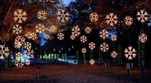 12 Christmas Light Displays In Tennessee That Are Pure Magic