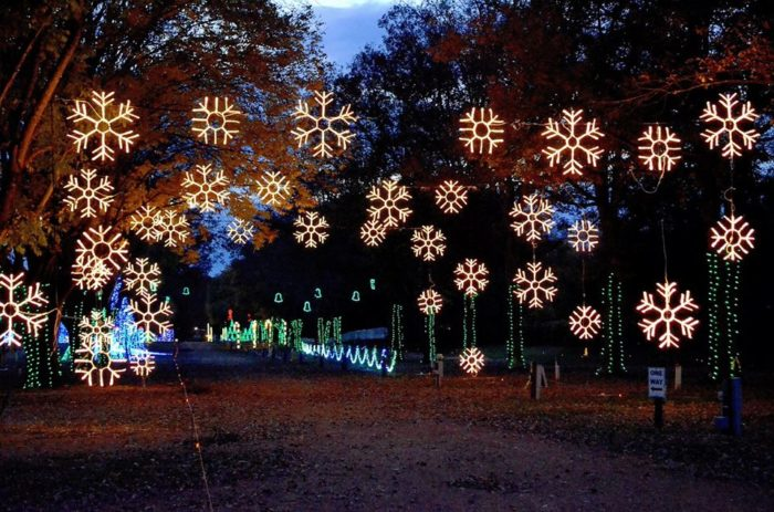 The Dancing Lights Of Christmas At Jellystone Park   Nashville