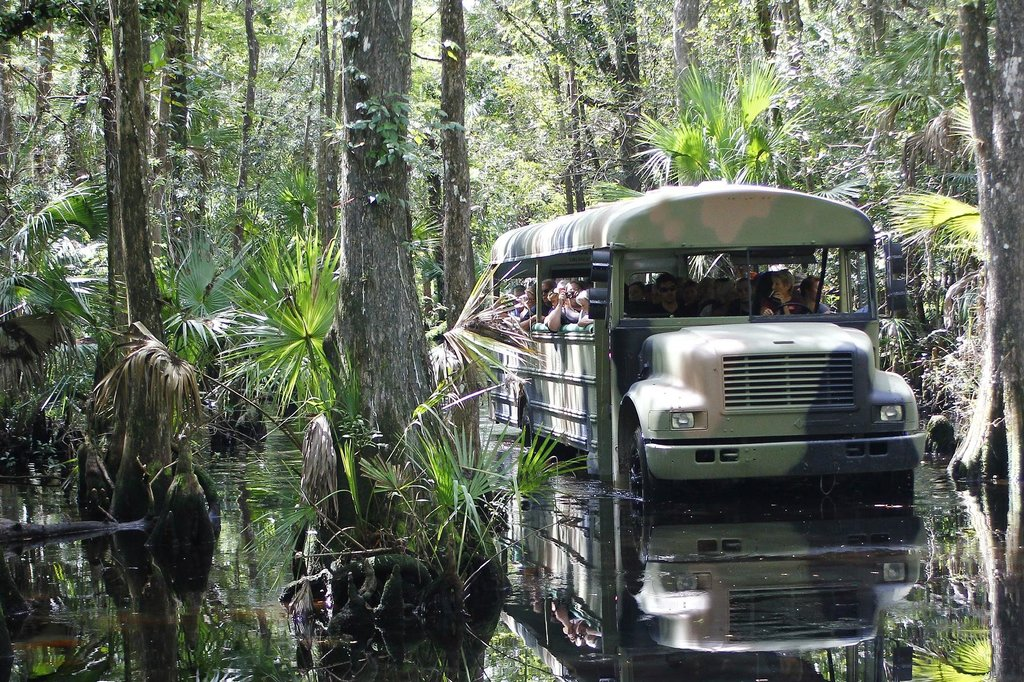 13 Unforgettable Florida Tours Everyone Should Take