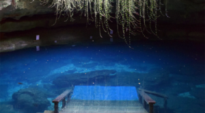 This Incredible Swimming Hole In Florida Is Unlike Anything You've Ever Seen