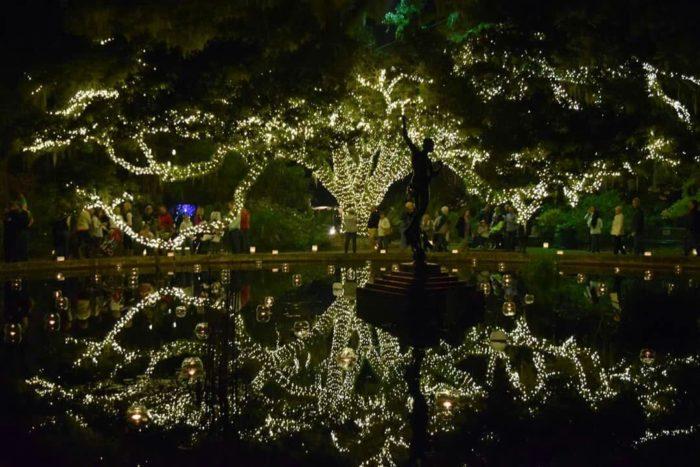 James Island Sc Christmas Lights