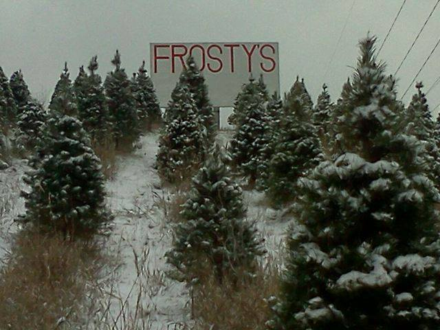 Frosty's Pines - Omaha. Facebook/Frosty's Pines Christmas Trees - 11 Places To Get Fresh Live Christmas Trees In Nebraska