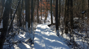 The One Winter Hike That Will Show You New Jersey Like Never Before