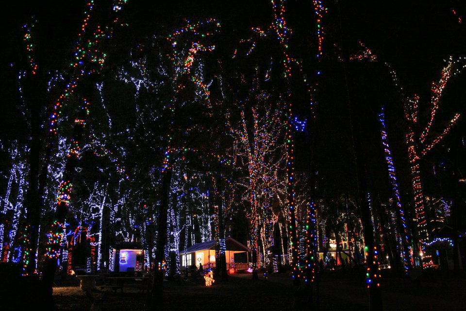 Christmas Lights In Denver