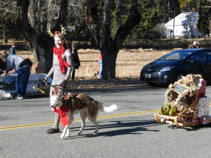 the small town of mccloud hosts a unique and fun parade the dog pony and bike parade