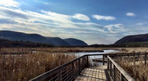 13 Unbelievable Hikes In New York That Locals Want To Keep Secret
