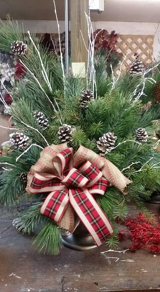 Christmas Tree Farms In Nebraska