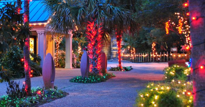 City Park New Orleans Christmas Lights