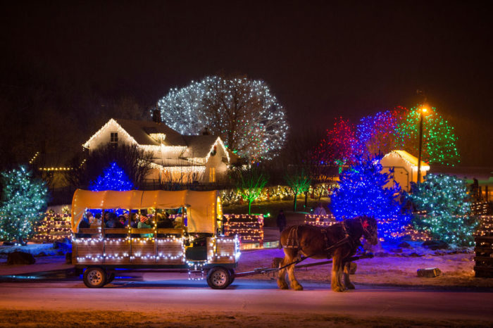 Attractive Trail Of Lights. Denver Botanic Gardens Photo Gallery
