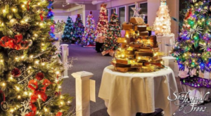 You Will Love This Epic Festival Of Christmas Trees In Massachusetts