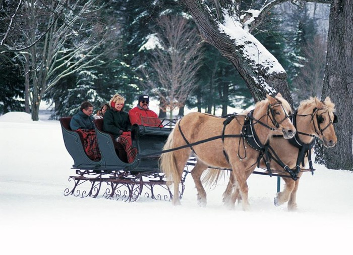 Take These 6 Charming Horse Drawn Carriage Rides In West