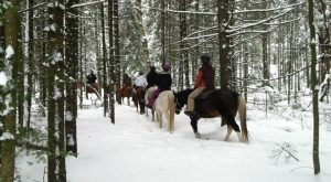 The Winter Horseback Riding Trail In New York That's Pure Magic