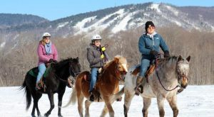 The Winter Horseback Riding Trail In New Hampshire That's Pure Magic