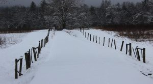 The Winter Horseback Riding Trail In Tennessee That's Pure Magic