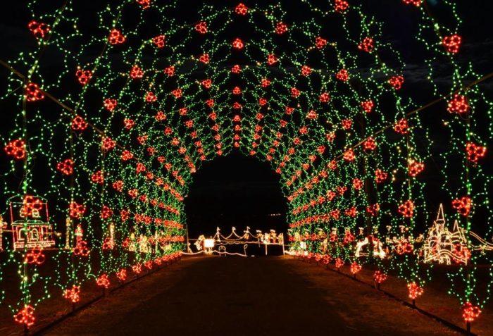 Travel This Christmas Lights Road Trip In Arizona