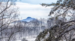 10 Picturesque Trails In North Carolina That Are Perfect For Winter Hiking