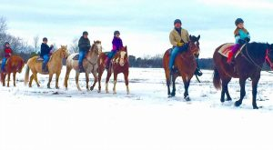 The Winter Horseback Riding Trail In Wisconsin That's Pure Magic