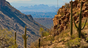 9 Easy Hikes You Can Enjoy In Arizona This Winter
