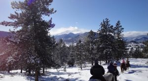 The Winter Horseback Riding Trail In Colorado That's Pure Magic