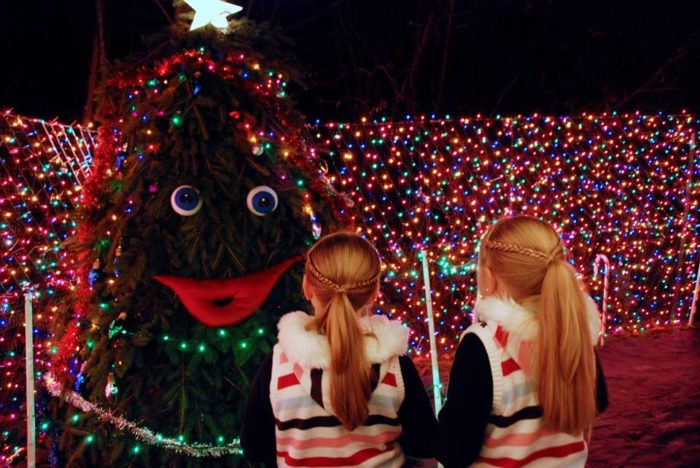 Visit the Lights of Christmas in Stanwood. - 12 Popular Christmas Traditions In Washington State
