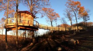 5 Treehouses Near Pittsburgh You Won't Believe