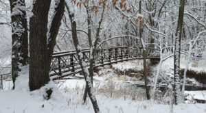 3. Whitetail Trail - Turtle River State Park (near Grand Forks)