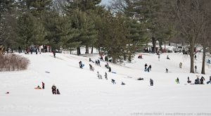 This One Park In Connecticut Is The Ultimate Sledding Destination