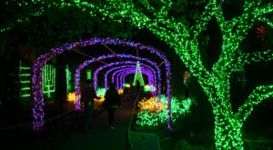 It's Not Christmas In Nashville Until You Do These 10 Enchanting Things