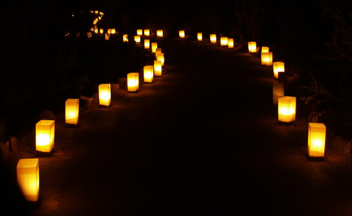 Image Result For Lanterns Decorated For Christmas