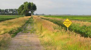24 Things Every True Nebraskan Does At Least Once Before They Die