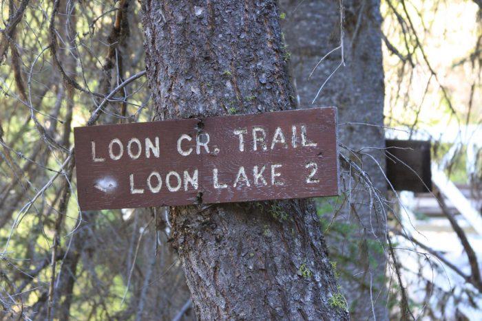 Loon Lake Loop