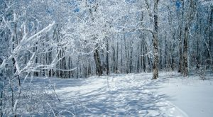 The Easy 2-Mile Winter Hike In Georgia That's Positively Bewitching