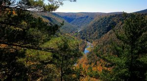 15 Things Every True Pennsylvanian Does At Least Once Before They Die