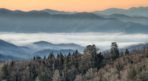 Here's The Most Scenic Drive You Can Possibly Take In Tennessee This Winter