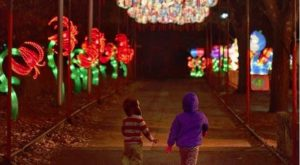 Ohio's Chinese Lantern Festival Will Mesmerize You In The Best Way Possible