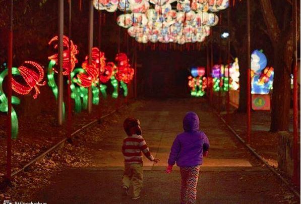 ohio 39 s chinese lantern festival is mesmerizing. Black Bedroom Furniture Sets. Home Design Ideas