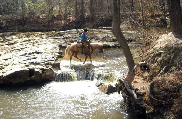 The Winter Horseback Riding Trail In Louisiana That S Pure