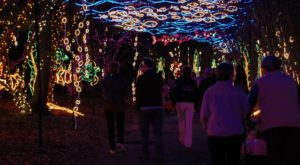 Everyone In Alabama Will Want To Visit This One Magical Christmas Attraction