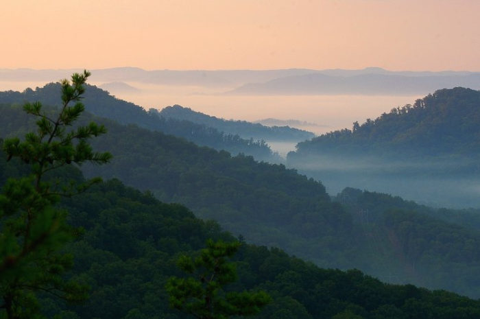 World Population By Race >> 15 Reasons Why You Should Never Move To Kentucky