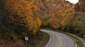 12 Unforgettable Road Trips To Take In Tennessee Before You Die