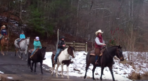 The Winter Horseback Riding Trail In Virginia That's Pure Magic