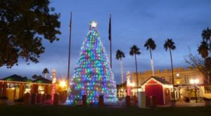It's Not Christmas in Arizona Until You Do These 10 Enchanting Things