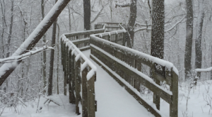 8 Picturesque Trails Around Pittsburgh That Are Perfect For Winter Hiking