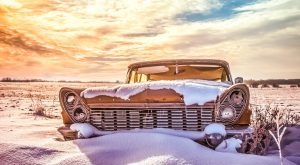 Mother Nature Is Reclaiming These Abandoned Automobiles And We Just Can't Look Away
