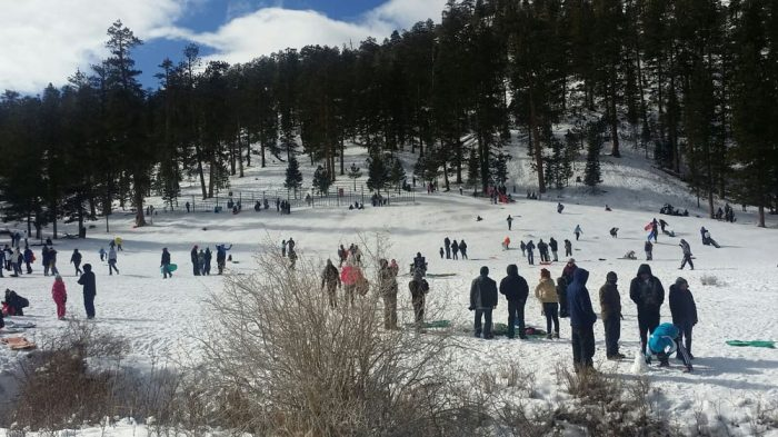 Here Are The 6 Best Places To Go Sled Riding In Nevada